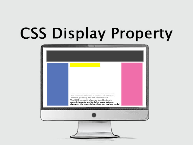 CSS display property
