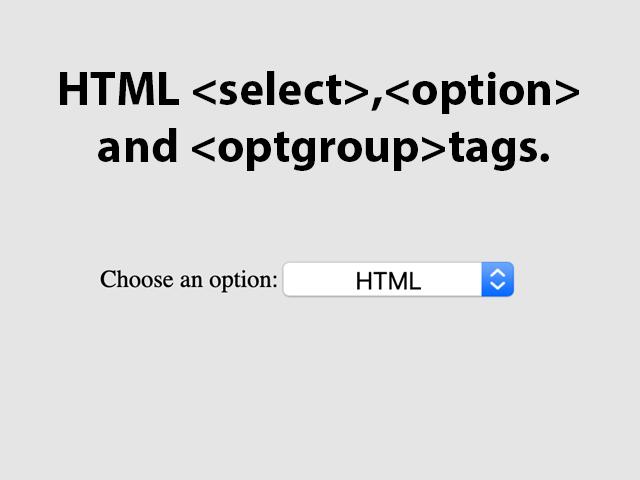 HTML option tag
