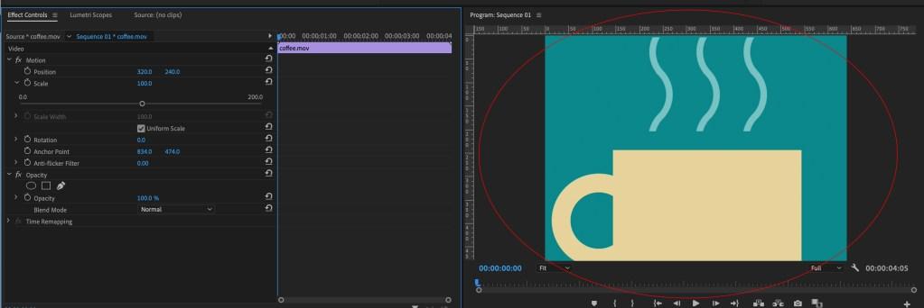Adobe Premiere pro GIF
